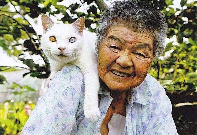 Цю кішку бабуся Мисан (так звуть господиню) знайшла в своєму сараї. З тих пір вони нерозлучні.