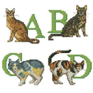 Алфавіт для кішки