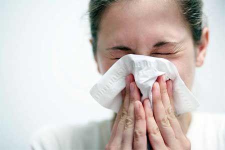 Алергія. Що потрібно знати любителям кішок