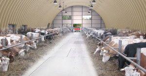 Ангари для сільського господарства ціна