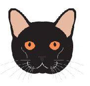 Бомбейська порода кішок. Стандарт породи і критерії оцінки.
