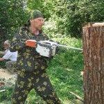 Процес роботи над деревом