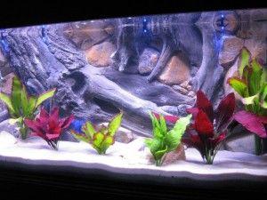 Декорування акваріума