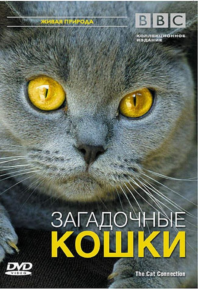 BBC: Загадкові кішки (The Cat Connection), 2002.