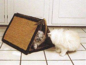 Будинок для кішки своїми руками