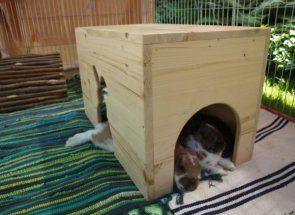 Дім, милий дім для вухатого вихованця: робимо кролику будиночок