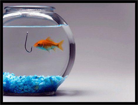 Домашній акваріум