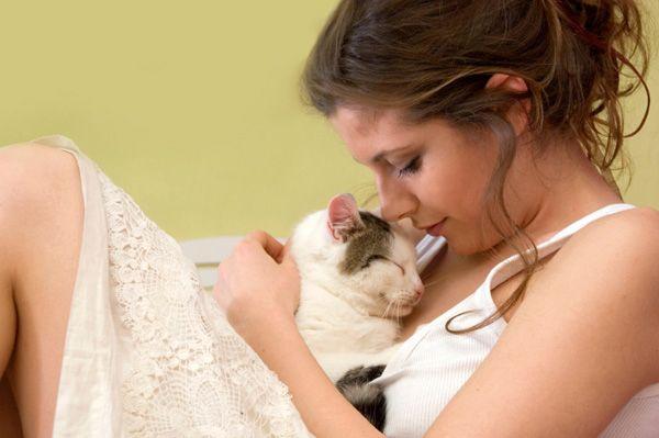 Кішка - домашній психолог