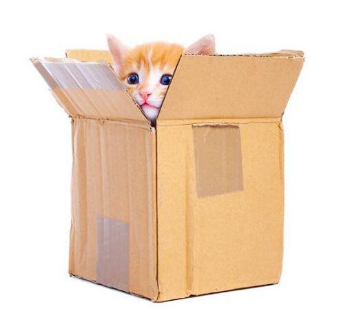 Будиночок для кішки з картону
