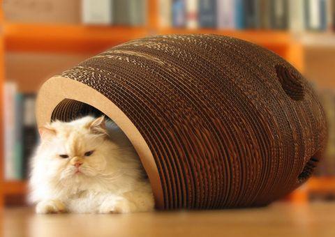 Котячий будиночок з картону