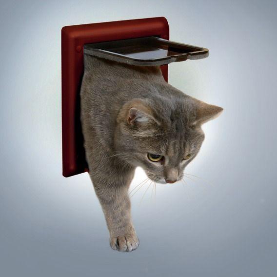 Відкидна дверцята для кішок