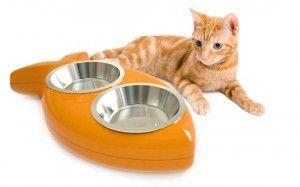 Миска для кішки