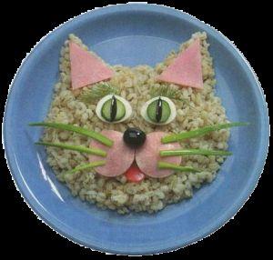Рецепти страв для кішок