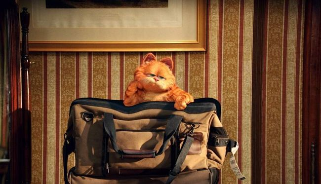 Гарфілд 2: Казка про двох кошенят (Garfield: A Tail of Two Kitties).