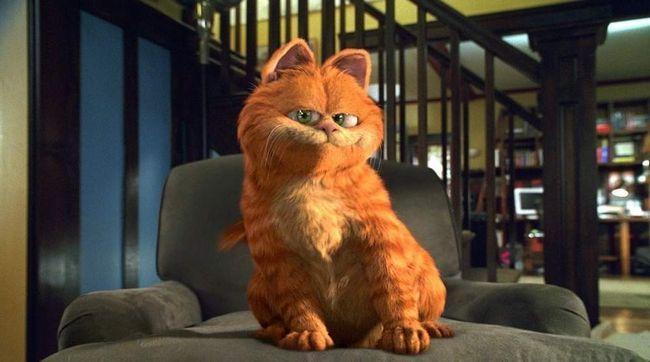 Гарфілд (Garfield), 2004.