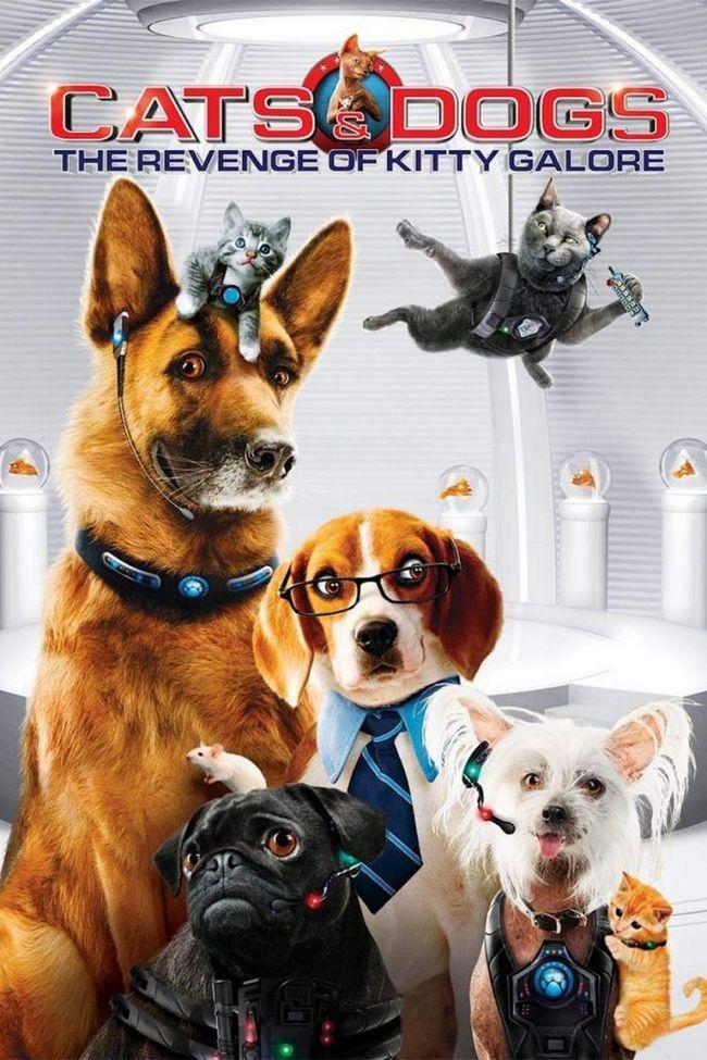 Фільм «кішки проти собак 2: помста кітті галор»