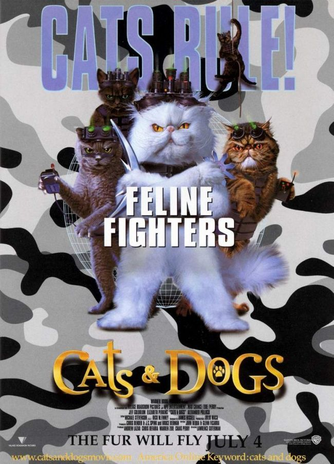 Фільм «кішки проти собак»