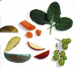 Фрукти, овочі та зелені корми
