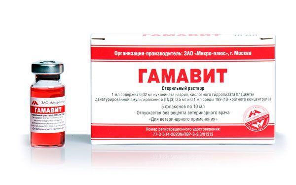 Гамавит для собак: ліки для імунітету і міцного здоров`я
