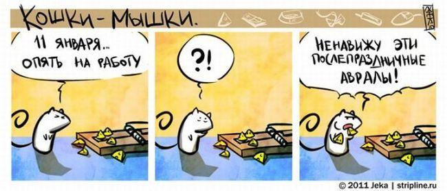 Дружба тварин: кіт лиже собаці мордочку. фото