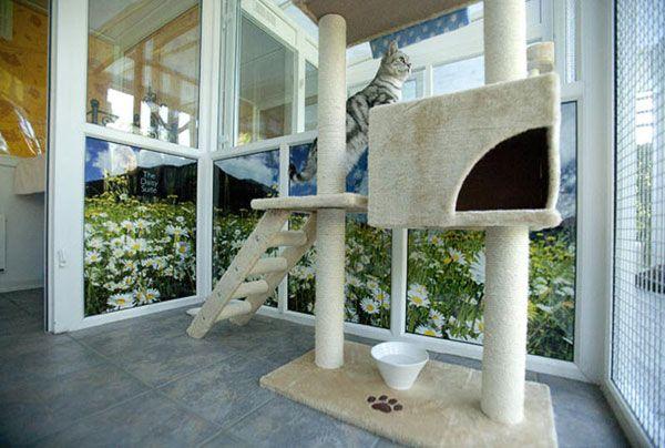 Готель для кішок