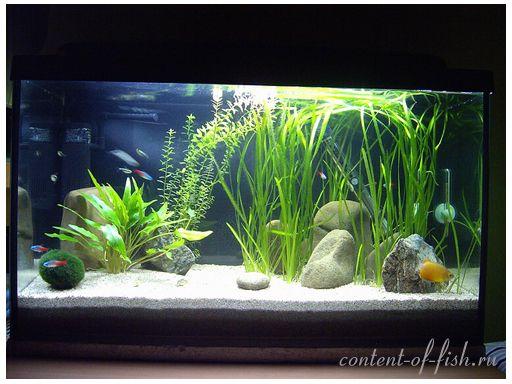 Грунт акваріумний