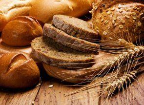 Хліб для курей - корисний продукт або небезпечна отрута?
