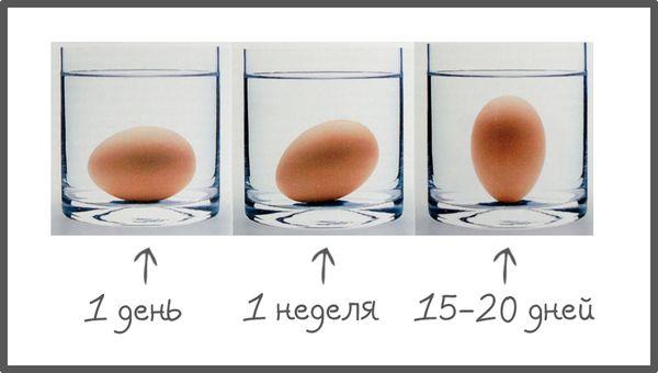 Три склянки з водою і яйцями