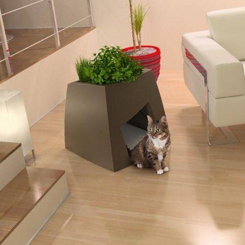Ідеї для кішок