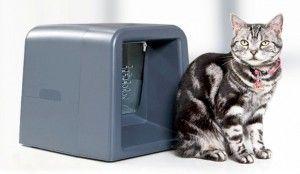 Електронна годівниця для кішок