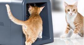 Годівниця для кішки