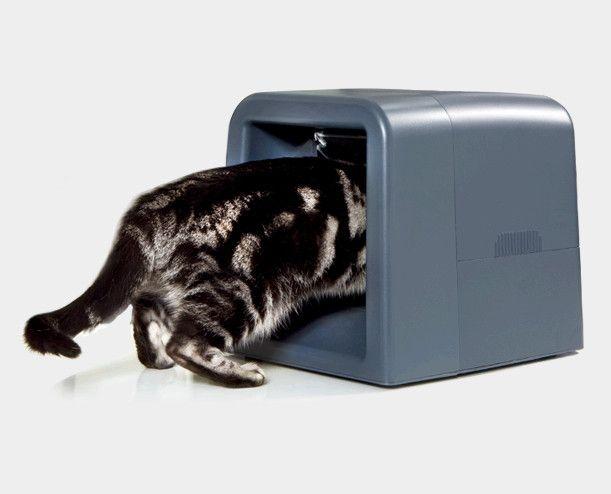 Електронна годівниця для кішки