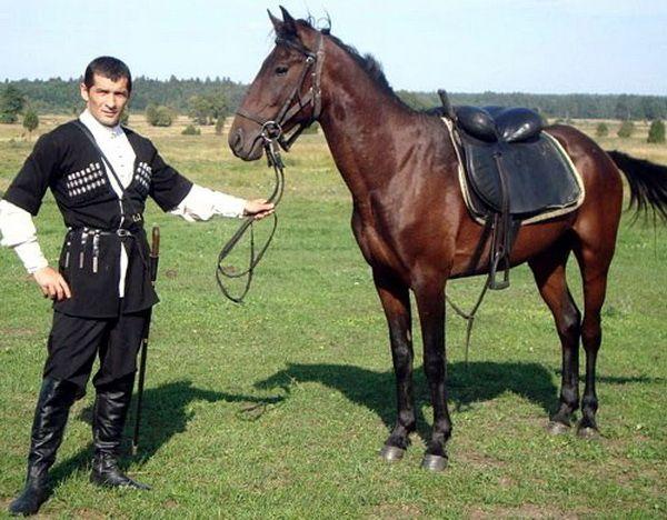 Молодий джигіт і кінь