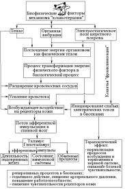Таблиця механізмів фелінотерапіі