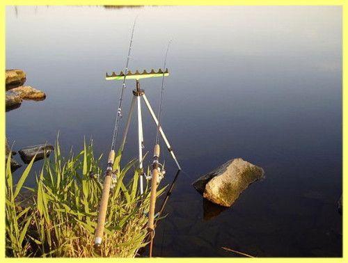 Як ловити плотву влітку: розповідь від першої особи
