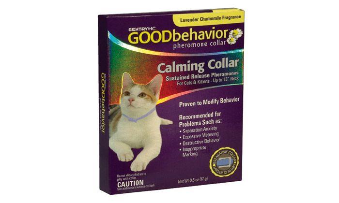 Заспокійливий нашийник для кішки