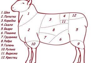 Як правильно зарізати і обробити барана