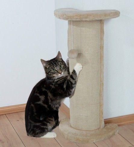 Когтеточка для кошенят