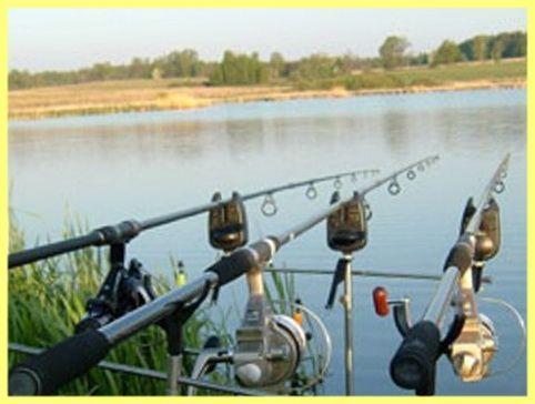 види вудок для літньої риболовлі