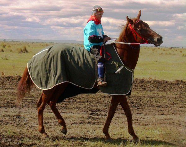 Яка може бути максимальна швидкість коня та від чого вона залежить
