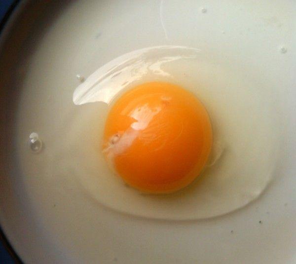 Великий і яскравий жовток в цесаріние яйці