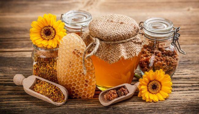 Кемеровській бджільництво - загартовані сибіром