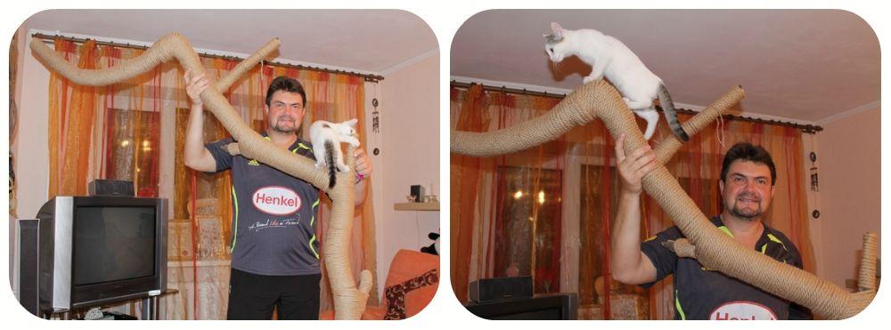 Когтеточка для кішки своїми руками