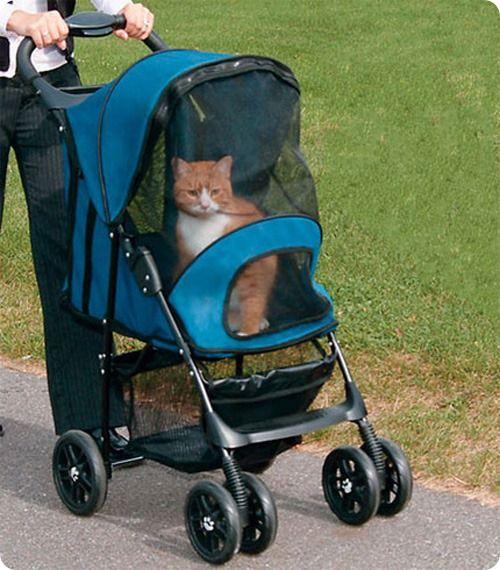 Коляска для кішки