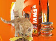 корм для кішок Ямс