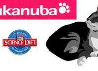 корм для кішок Eukanuba