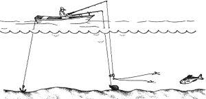 Які снасті потрібно для риболовлі на кільце
