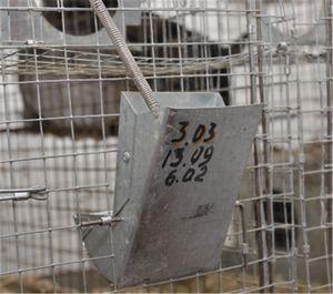 Годівниці для шиншил в Україні ціна купити на Allbiz