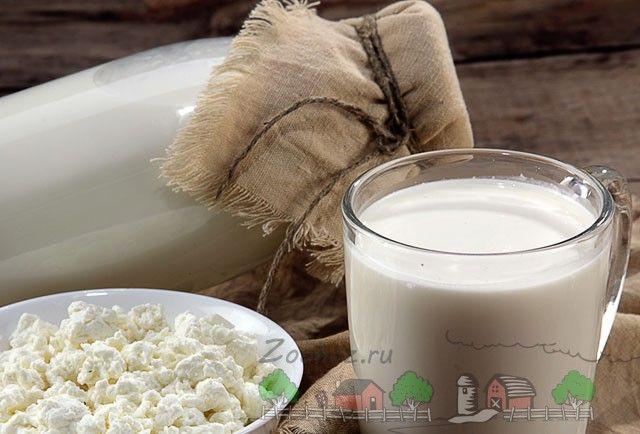 Молоко корови в склянці і пляшці