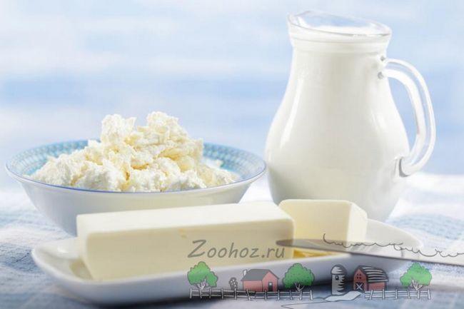 Молочні продукти на столі